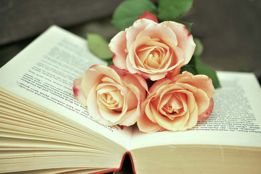 Open publication with roses on the pages