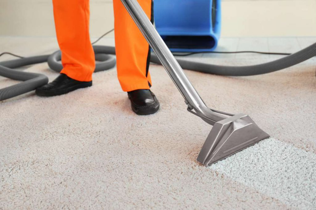 Professional cleaner vacuuming the carpet