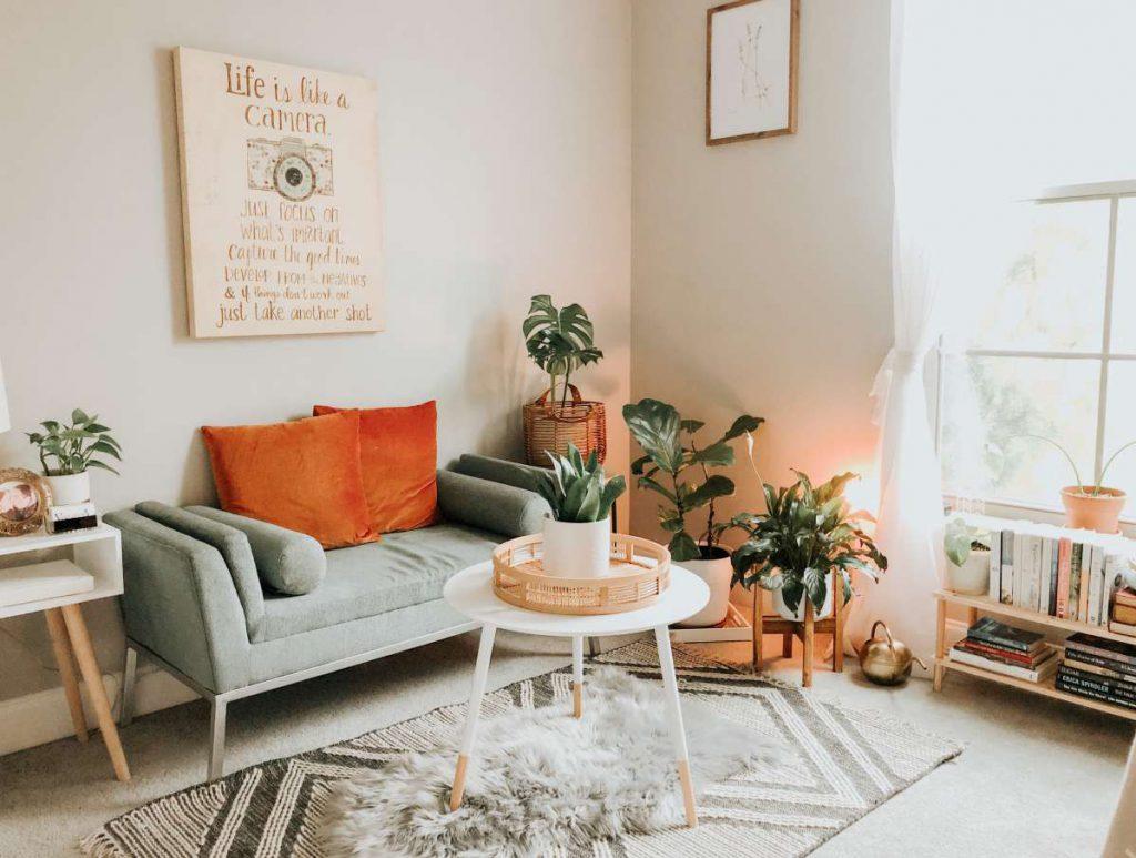 Sofa, coffee table, plants, and shelf with books